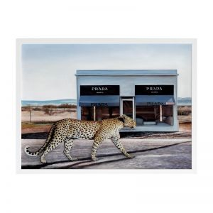 Catwalk | Framed Art  Print