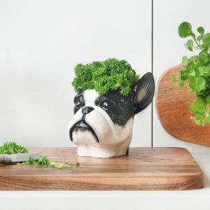 Ceramic Planter | Frenchie | White Moose