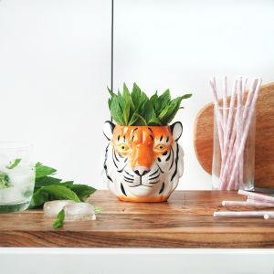 Ceramic Planter | Tiger | White Moose