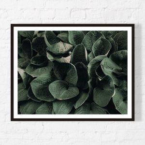 Cluster | Framed Print | Artefocus