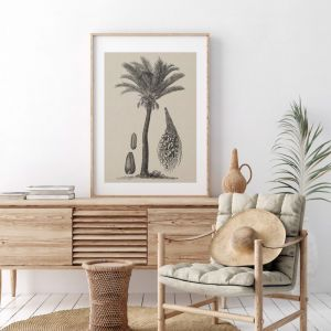 Coastal Palm Charcoal 2 | Print | Stretched Canvas or Printed Panel
