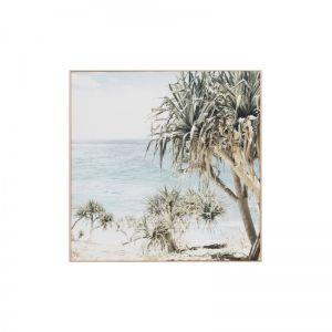 Coastal Palms Canvas