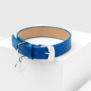 Cobalt Leather Dog Collar