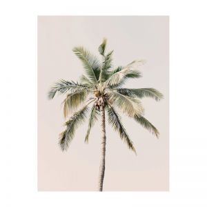 Coco Loco | Rolled Art Print | Various Sizes