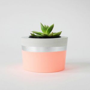 Concrete Planter | Fluro Light Peach & Silver | by Coral and Herb