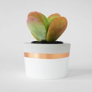 Concrete Planter | White & Copper | by Coral and Herb