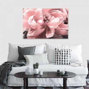 Coral Peony | Canvas Artwork | Various Sizes