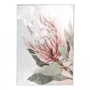 Coral Protea | Framed Canvas Print