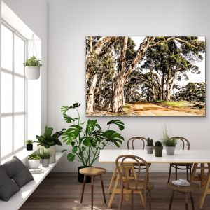 Country Road |  Australian Bush Road Nature Stretched Canvas or Wall Art Print