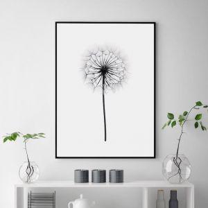 Dandelion | Unframed Art Print