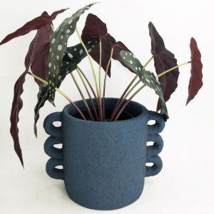 Dayze Planter Medium