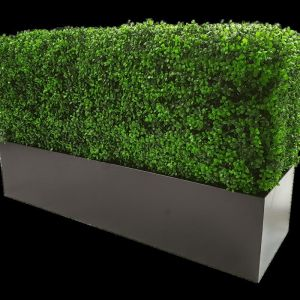 Deluxe Portable Buxus (Bright) UV Resistant 100cm Long x 50cm High x 25cm Wide
