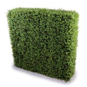 Deluxe Portable Buxus Hedge | UV Resistant | 1m x 1m