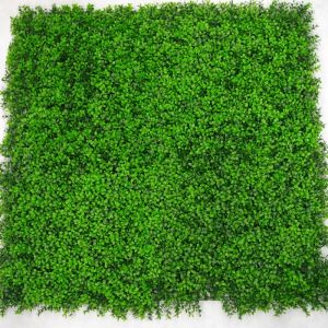 Deluxe Vertical Boxwood Garden | 1m by 1m