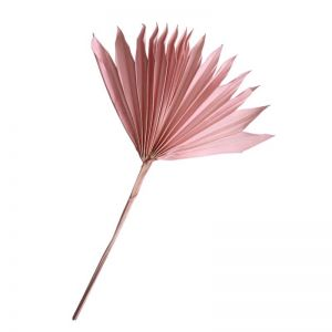 Dried Palm Sun | Pink | by Raw Decor