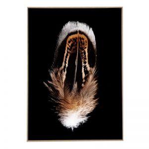 Driftwood Feather 1   Framed Art Print