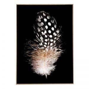 Driftwood Feather 2   Framed Art Print