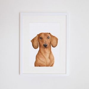 Duke the Dachshund | Giclee Print | by For Me By Dee