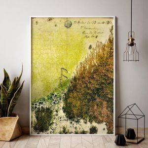 Dutch Moss 1 | Limited Edition art prints | Unframed | 3 sizes