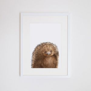 Eddie the Echidna | Giclee Print | by For Me By Dee
