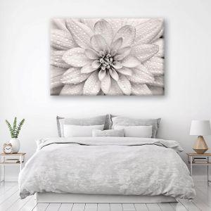 Elegant Bloom | Canvas Artwork