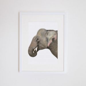 Elliot the Elephant | Giclee Print | by For Me By Dee