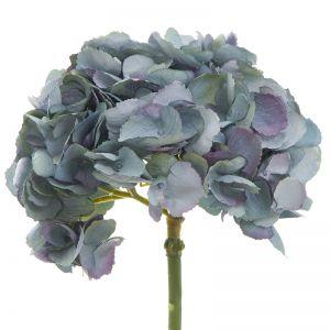 English Hydrangea | Dark Blue
