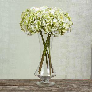 English Hydrangea | White & Green