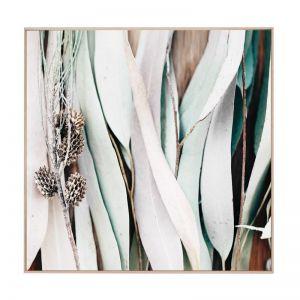 Eucalyptus | Framed Canvas Art Print