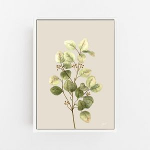 Eucalyptus Native Living Art 1 in Ivory Fine Art Print by Pick a Pear | Canvas Wall Art