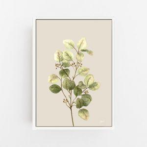 Eucalyptus Native Living Art 1 in Ivory Fine Art Print by Pick a Pear | Canvas Wall Art