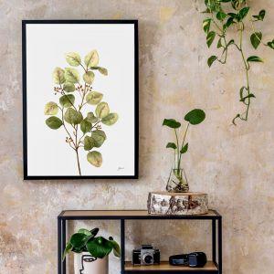 Eucalyptus Native Living Art 1 in White Art Print   by Pick a Pear   Unframed