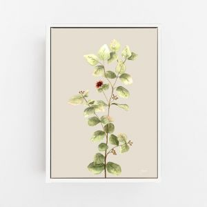 Eucalyptus Native Living Art 2 in Ivory Fine Art Print by Pick a Pear | Canvas Wall Art