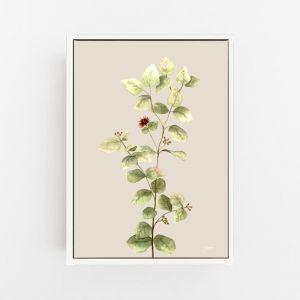 Eucalyptus Native Living Art 2 in Ivory Fine Art Print by Pick a Pear | Canvas Wall Art