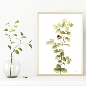 Eucalyptus Native Living Art 2 in White Art Print   by Pick a Pear   Unframed