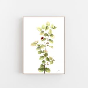 Eucalyptus Native Living Art 2 in White Fine Art Print by Pick a Pear | Canvas Wall Art