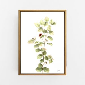Eucalyptus Native Living Art 2 in White Wall Art Print   by Pick a Pear   Canvas