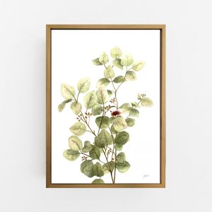 Eucalyptus Native Living Art 3 in White Fine Art Print by Pick a Pear | Canvas Wall Art