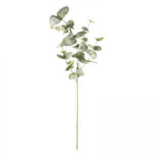 Eucalyptus Spray Mixed Sized Leaves x 12 stems