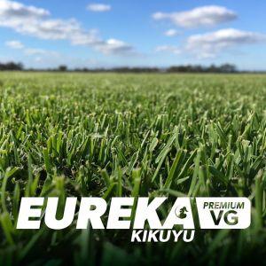 Eureka Premium Kikuyu VG Lawn