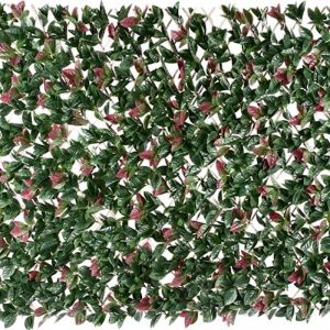 Extendable Photinia Screen/Trellis | 2m by 1m