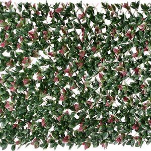 Extendable Photinia Screen/Trellis | 2m by 1m