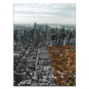 Fall Over Central | Prints and Canvas by Photographers Lane