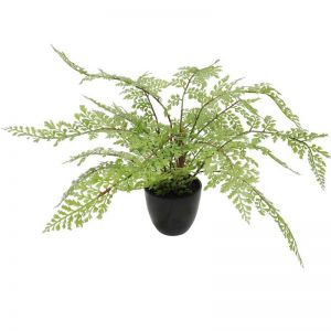 Faux Small Potted Fern | 35cm