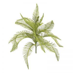 Fern Feather Bush x 6 stems