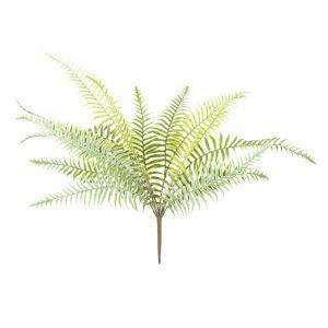 Fern Pick | Green x 6 stems