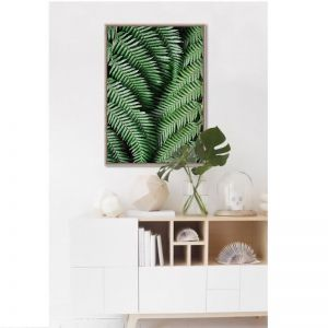 Ferntree Canvas Print | Framed