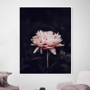 Flower Bomb | Canvas Wall Art by Beach Lane