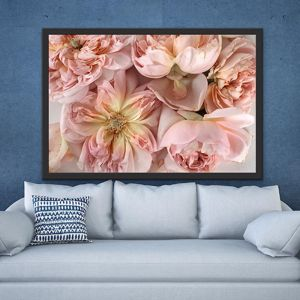 Flower Power Macro | ACRYLIC Limited Edition Print | Antuanelle