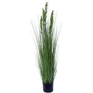 Flowering Native Grass 120cm